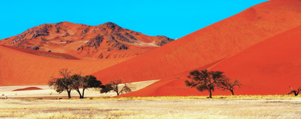 Namibia 14 Days 4x4 Exploration Safari