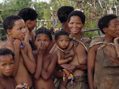 Wildlife and Bushman safari