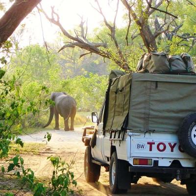 african-safari-tour
