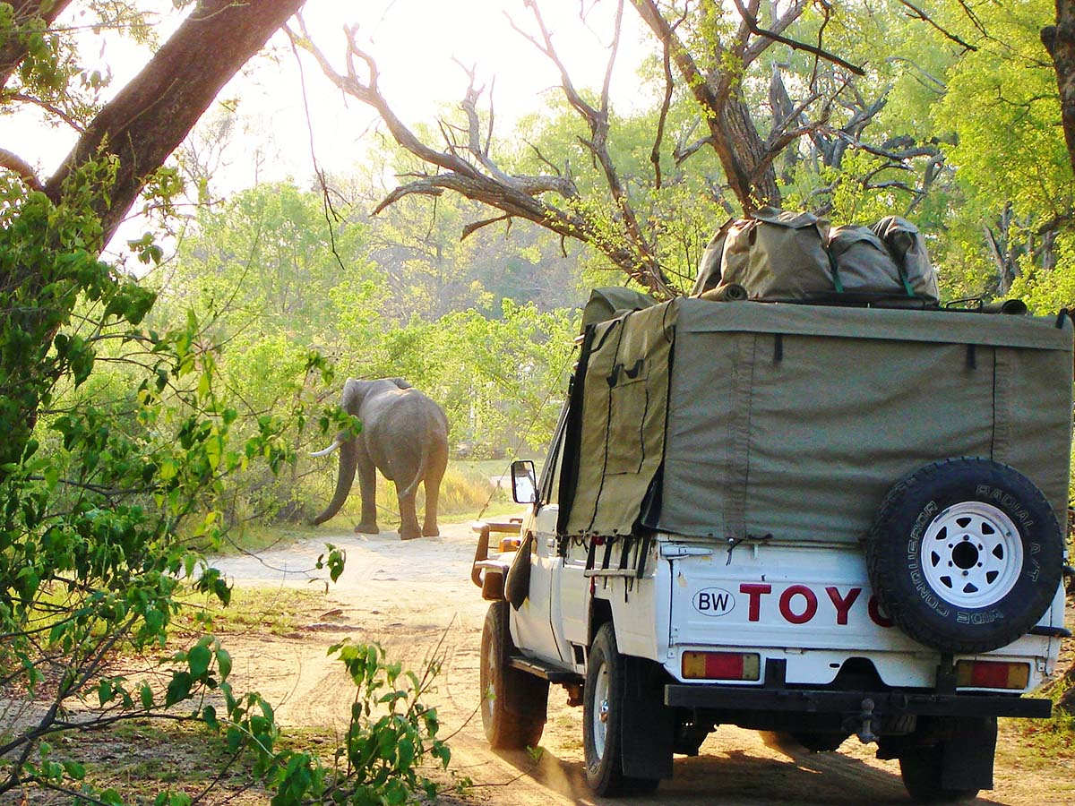 african-safari-tour